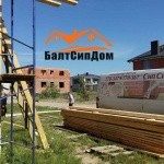 Сип дома в Калининграде